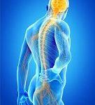 Jan Hartvigsen, chercheur et chiropracteur, publie dans The Lancet une étude sur la dramatique évolution de la lombalgie dans le monde